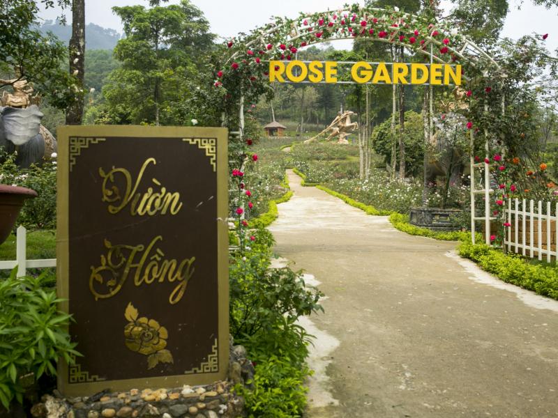 Trao kỷ lục Guinness cho vườn hồng lớn nhất Việt Nam